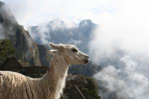 Teach English in Peru - Cost of Living